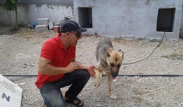 Hayvanseverlerden Samandağ Belediyesi'ne teşekkür