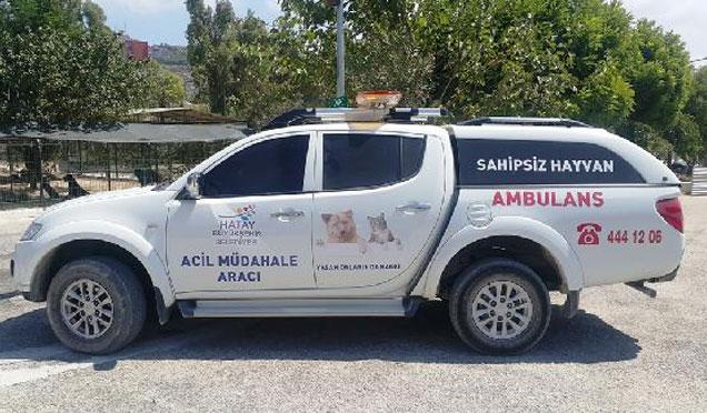 Hayvan Ambulansı görevde