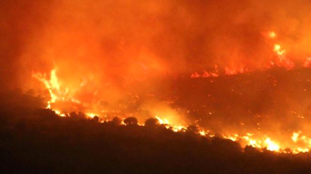 Arsuz'da çıkan orman yangını gece kontrol altına alındı