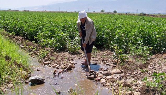 Amik Ovası'na su verilmeye başlandı