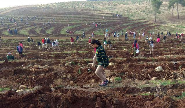"""Kırıkhan'da """"İklim Koru Toprağı Koru"""" etkinliği"""