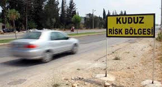 Hatay'da 2 mahalle kuduz nedeniyle karantinaya alındı