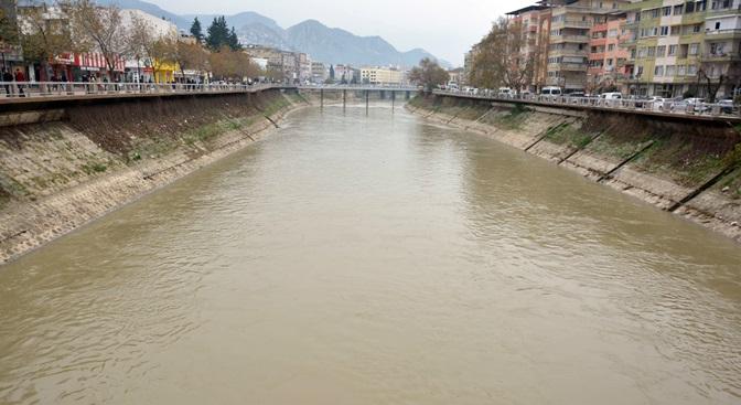Kent Merkezindeki Su Sümbülleri Temizlendi