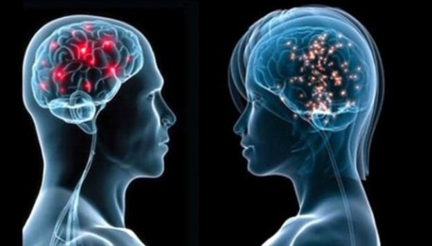 Östrojen hormonu kadınların hafızasını koruyor