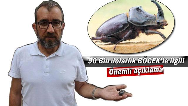 Gerdegan böceği kamuoyuna yanlış lanse ediliyor