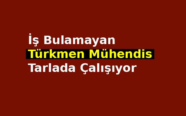 İş bulamayan Türkmen Mühendis tarlada çalışıyor