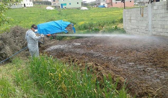 Antakya Belediyesi ilaçlama çalışmalarına devam ediyor
