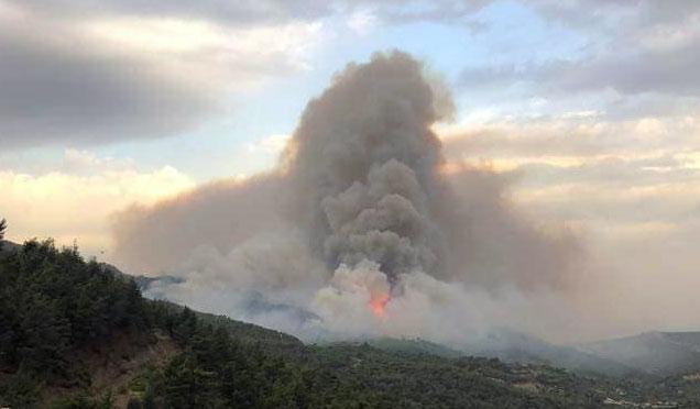 Belen'de çıkan yangın için 5.6 Milyonluk zarar talebi