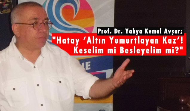 """""""Hatay 'Altın Yumurtlayan Kaz'! Keselim mi Besleyelim mi?"""""""