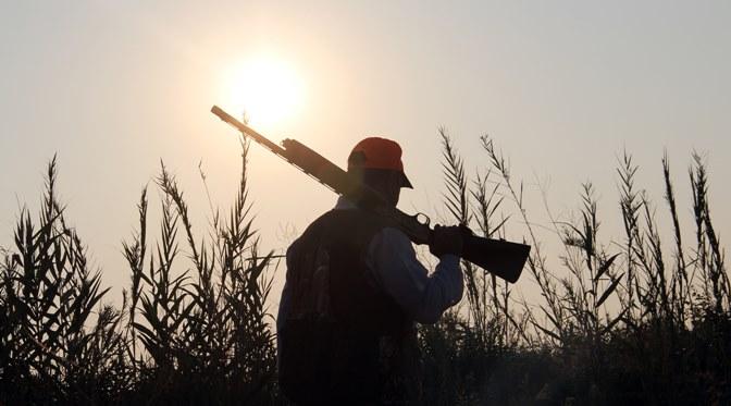 Avcılar ormanda çürümüş ceset buldu