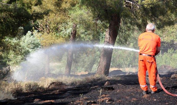 Kırıkhan Mesire alanında orman yangını çıktı