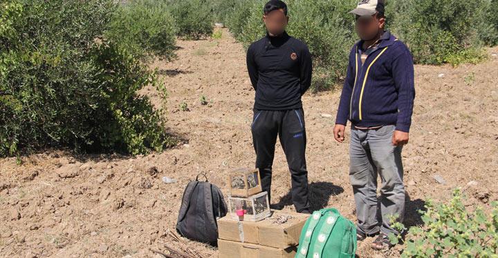 Kırıkhan'da kaçak avcılara 9 Bin 800 lira ceza