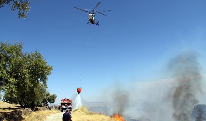 Kırıkhan'da 500 dönümlük zeytinlik alan yangında zarar gördü