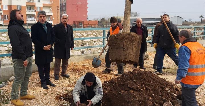 Kırıkhan'da ağaçlandırma çalışmaları