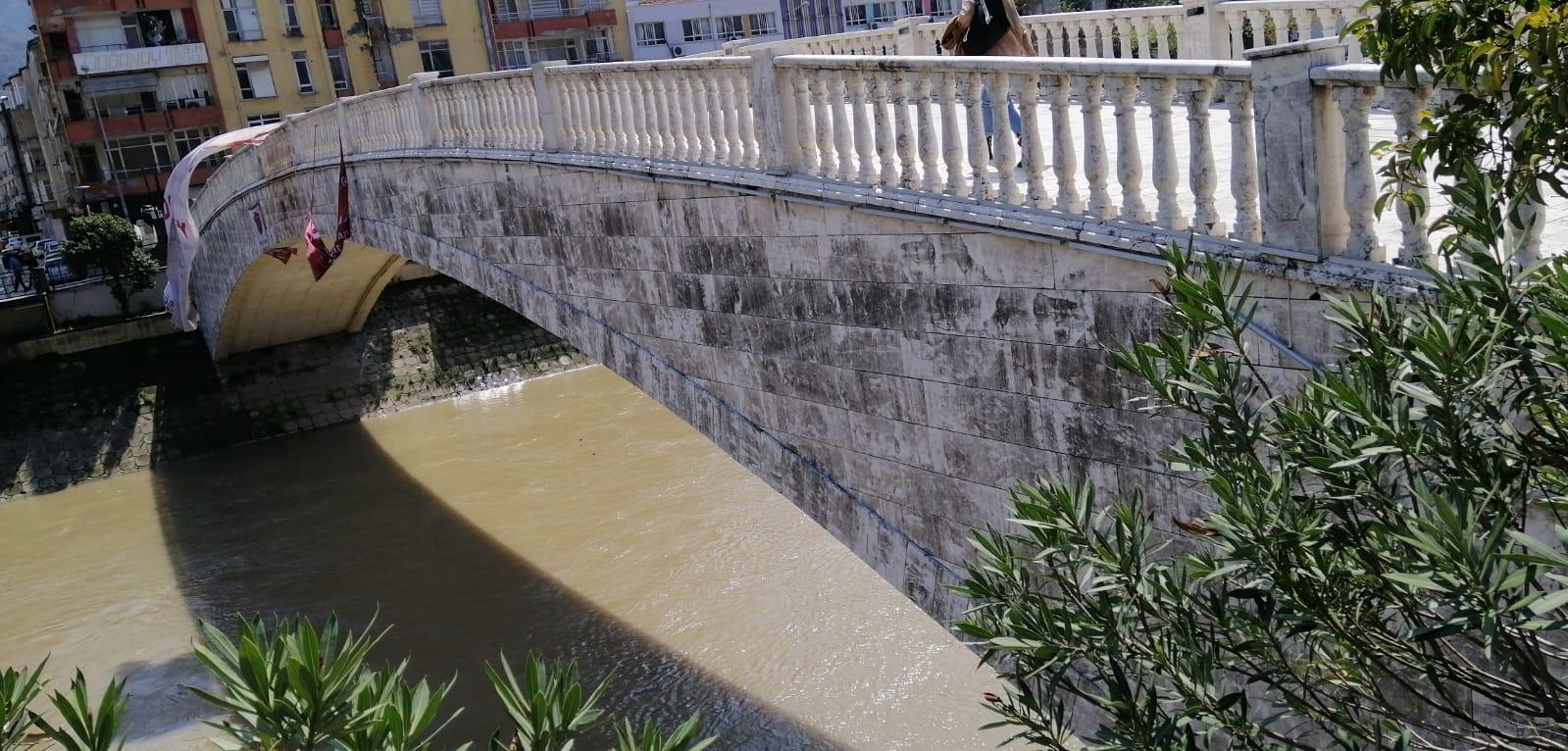 Asi köprüleri üstünde yosun temizliği