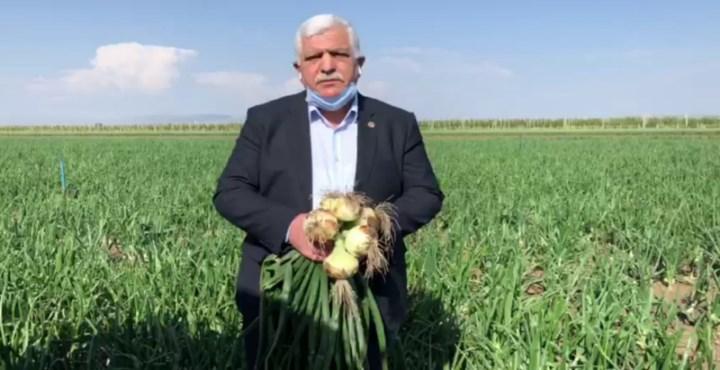 """""""Soğan Üreticisi Zor Durumda Kalabilir!"""""""