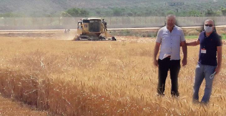 Amik Ovasında Biçerdöver Kontrolü Yapılıyor