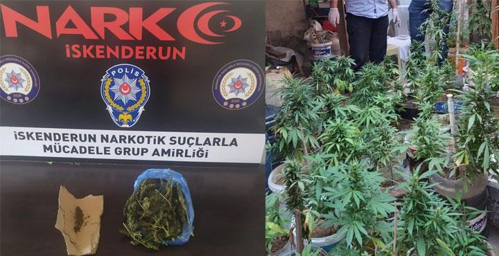 İskenderun'da Uyuşturucu Operasyonları!