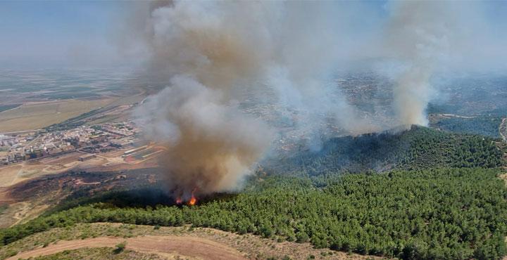 Antakya'da Orman Yangını