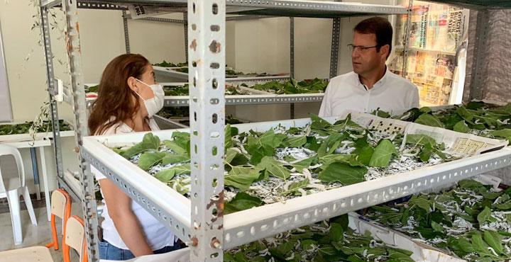 Eryılmaz; İpek Böcekçiliği yapmak isteyenlere kapımız açık