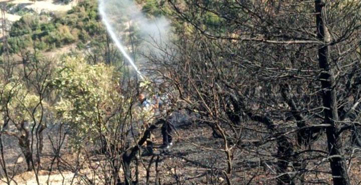 Son dakika! Biri Bitmeden Diğeri Başlıyor, Yayladağı'nda Orman Yangını