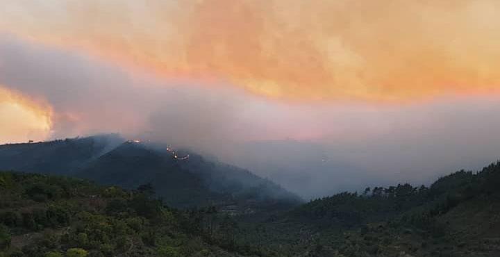 Suriye Sınırındaki Orman Yangını Hızını Artırarak Sürüyor