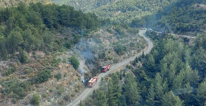 Arsuz'da Orman yangını çıktı; yakan kişi gözaltına alındı