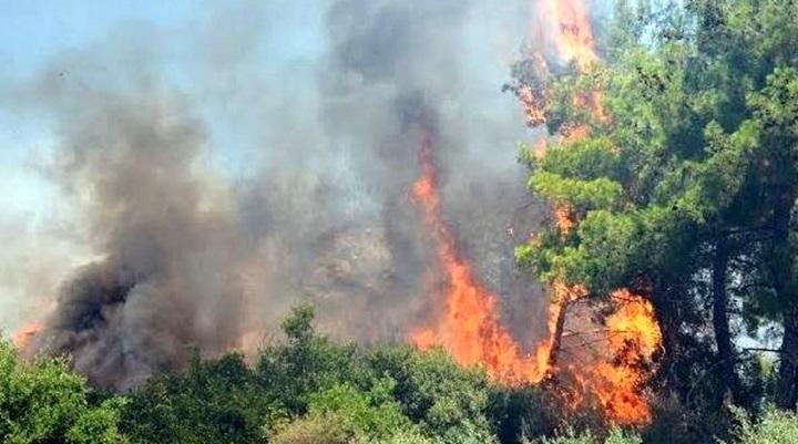 Amanoslarda yangın; Bu defa Dörtyol bölgesinde