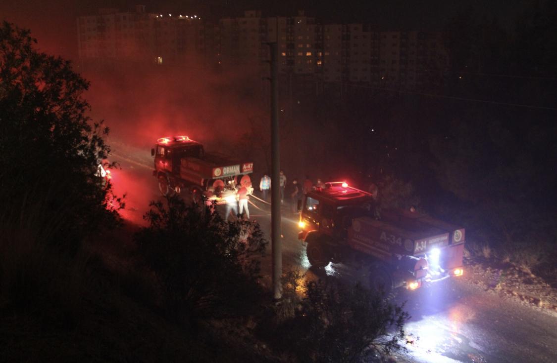 Yangında 200 hektarlık alan zarar gördü