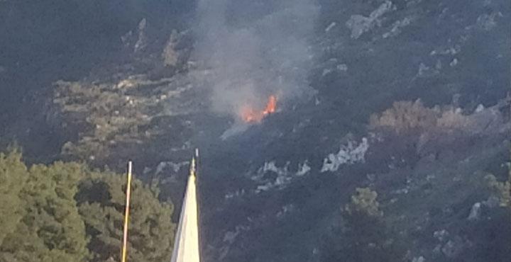 Habibi Neccar Dağında çıkan Yangın Büyümeden Söndürüldü