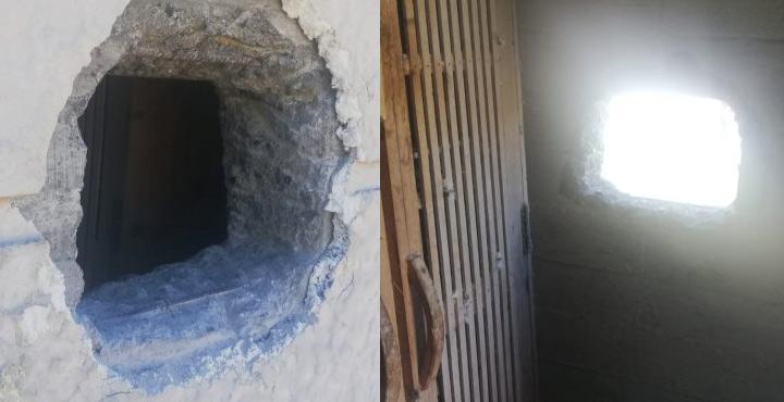 Beton duvarı delip 100 güvercini çaldılar