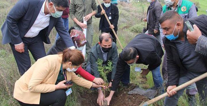 Covit'ten Hayatını Kaybeden Sağlık Çalışanları Adına Fidan Dikildi