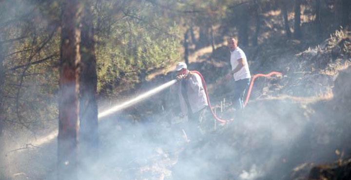 Hassa ilçesinde çıkan örtü yangını kontrol altına alındı