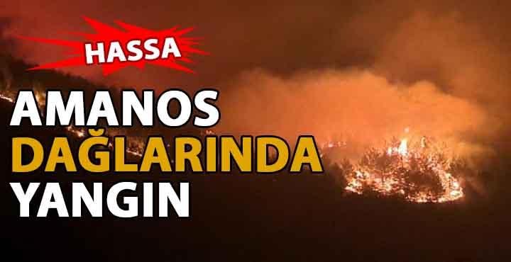 Hatay Amanos Dağlarında Yangın Çıktı