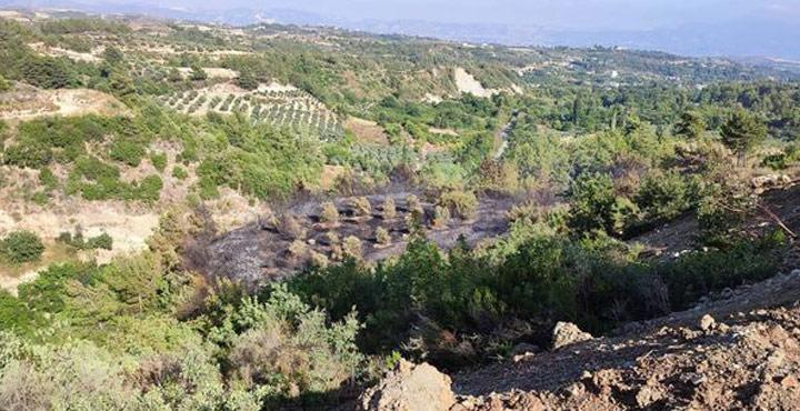 Samandağ Çubuklu'da Çıkan Orman Yangını Kontrol Altına Alındı