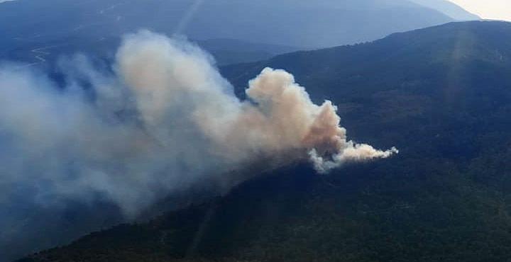 Kisecik'te çıkan yangında 3 hektarlık alan zarar gördü