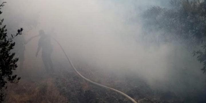 Samandağ'da çıkan bahçe yangını ormanlık alana ulaşmadan söndürüldü