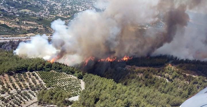 Dörtyol'da çıkan orman yangını söndürüldü