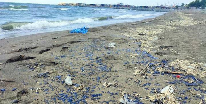 Suriye'den denize sızan petrol Samandağ sahilinde göründü